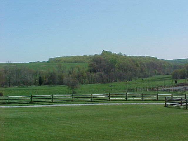 view of pastures and meadow from the porch of Above All Else